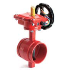 Butterfly valve with tamper switch grooved end